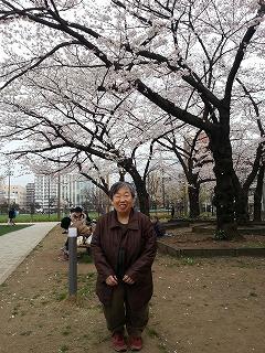 満開の桜の前でちょっとかしこまって