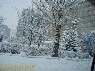 1月19日雪に覆われた札幌の風景