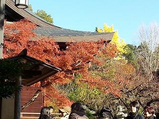 北野神社庭園入り口から見た色とりどりの紅葉