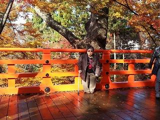 北野神社の庭園、紅葉をバックにして一枚