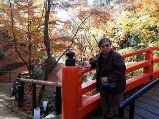 庭園の太鼓橋の上で記念撮影したところ。周りは色とりどりの紅葉