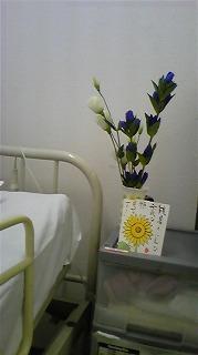 母の枕元の花と絵手紙