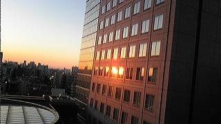 隣にビルの窓ガラスに映ってといる夕日