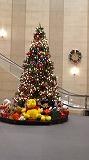 正面玄関を入った所にある大きなクリスマスツリー